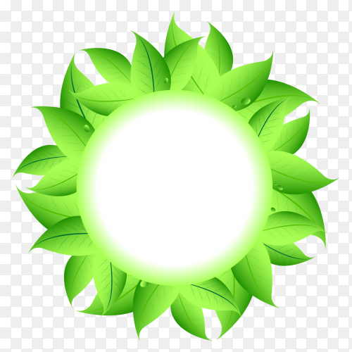 Green Leaves background on transparent PNG