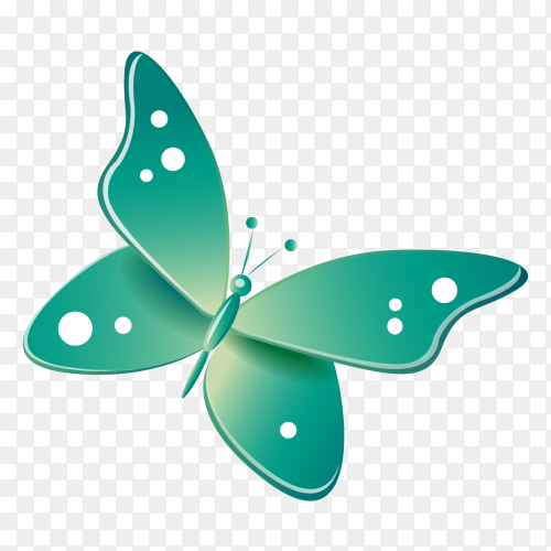 Green butterfly on transparent background PNG