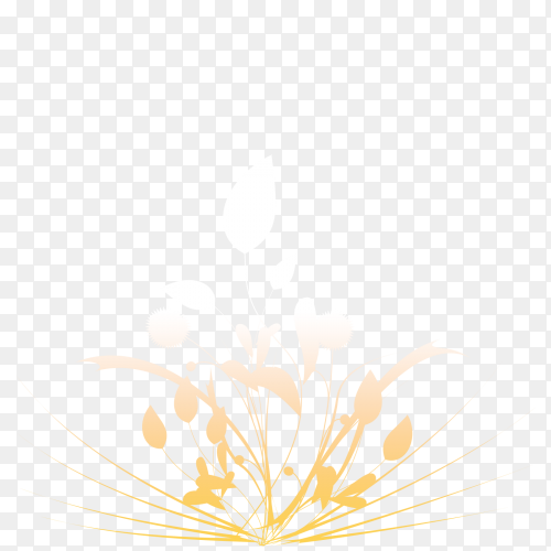 Growing plant on transparent PNG