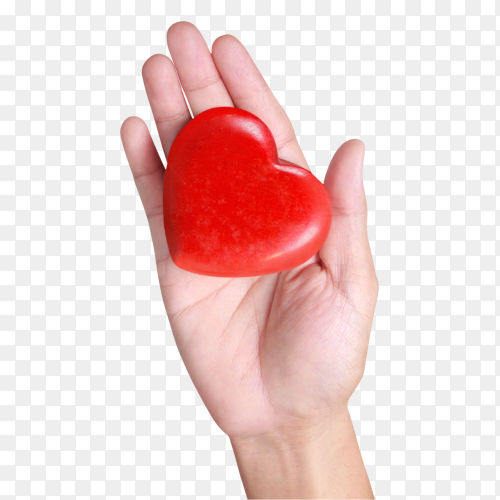 Hands holding a red heart on transparent background PNG
