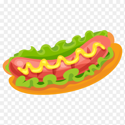 Hot dog sandwitch on transparent background PNG