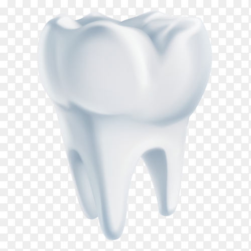 Human Tooth on transparent background PNG