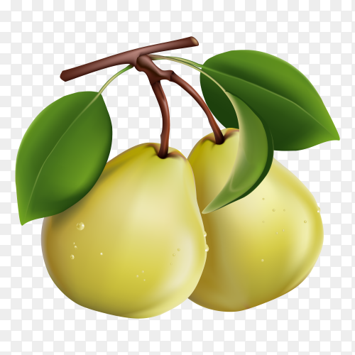 Juice pears on transparent background PNG