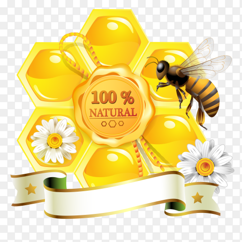 Natural honey banner on transparent background PNG