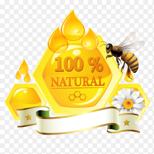 Natural honey bee design vector PNG