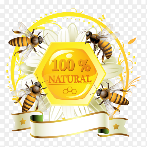 Natural honey with bee on transparent background PNG