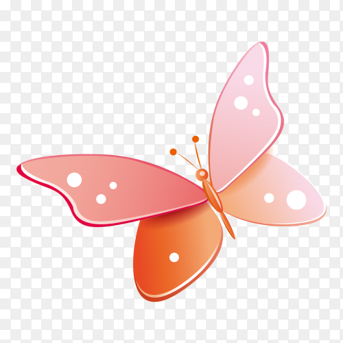 Pink butterfly on transparent background PNG
