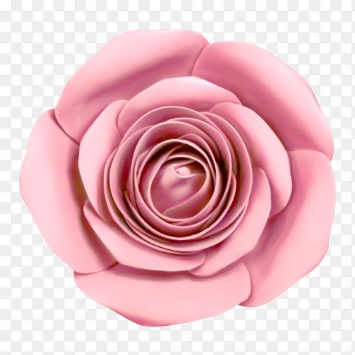 Pink flower on transparent background PNG