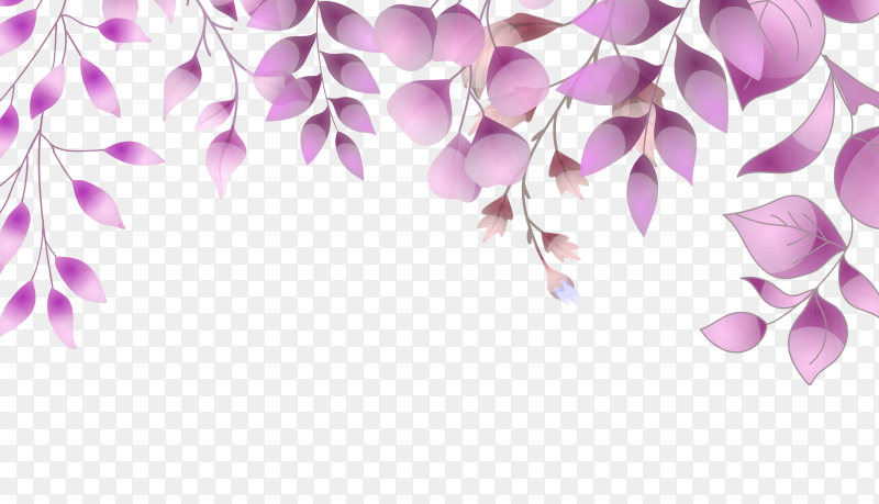 Purple leaves on transparent background PNG