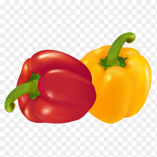 Red and yellow pepper on transprent background PNG