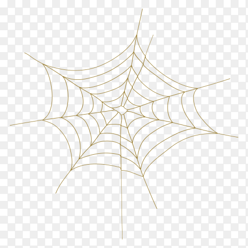Spider web on transparent background PNG