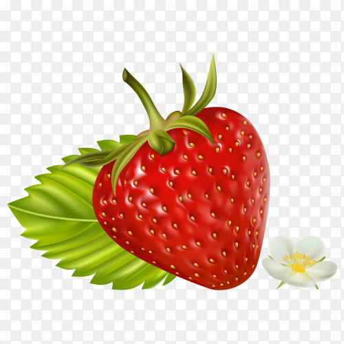 Strawberry with green leaf on transparent background PNG