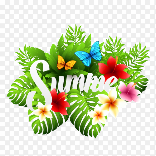 Summer handwriting lettering with summer flower on transparent background PNG