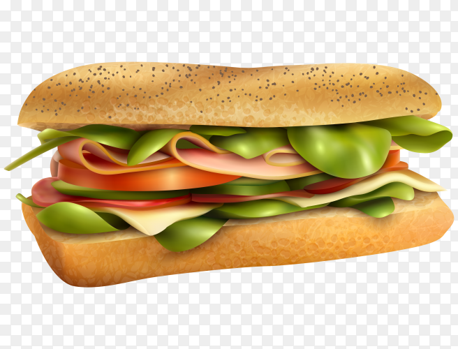 Tasty ana fresh sandwitch on transparent background PNG
