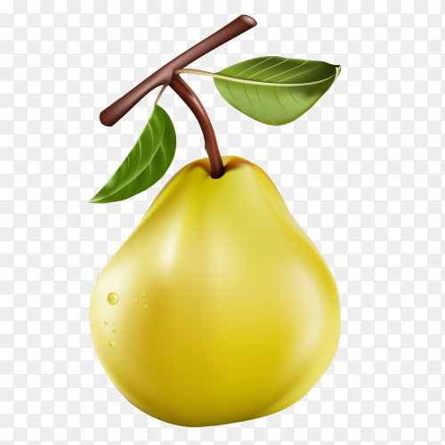 Realistic pear isolated on transparent background PNG