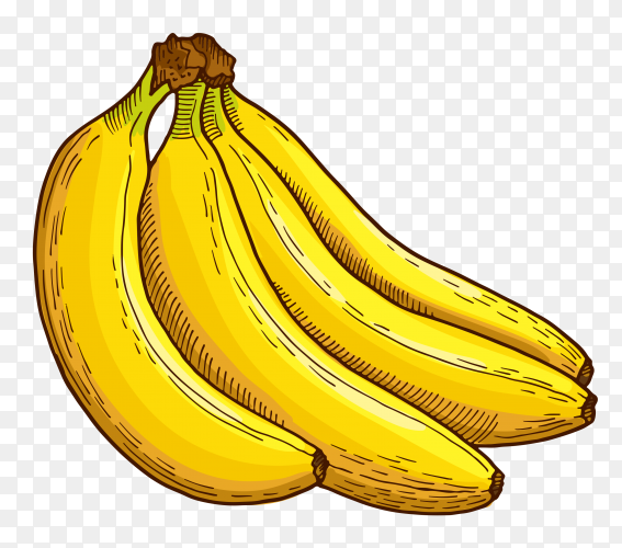 Banana fruit on transparent background PNG