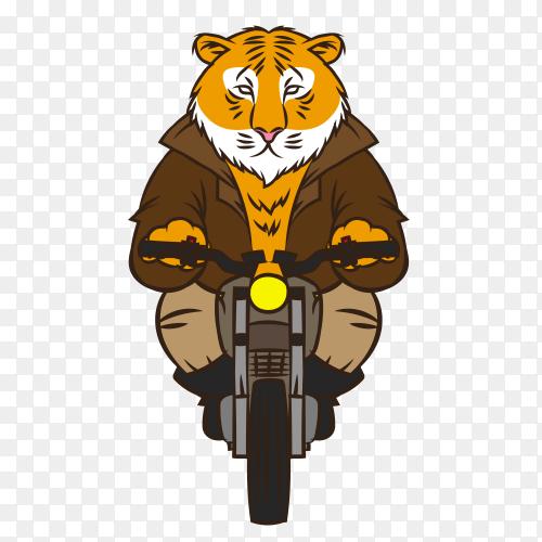 Cartoon Tiger riding motorcycle premium vector PNG