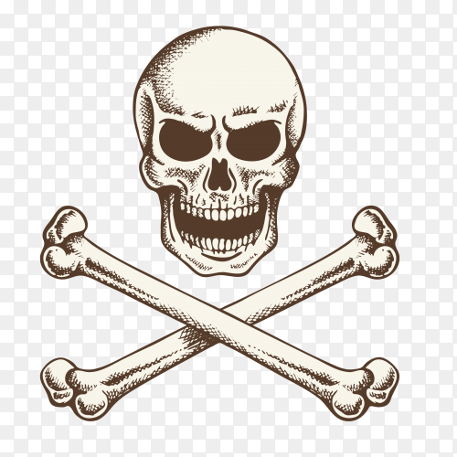 Crossed bones skull icon on transparent background PNG