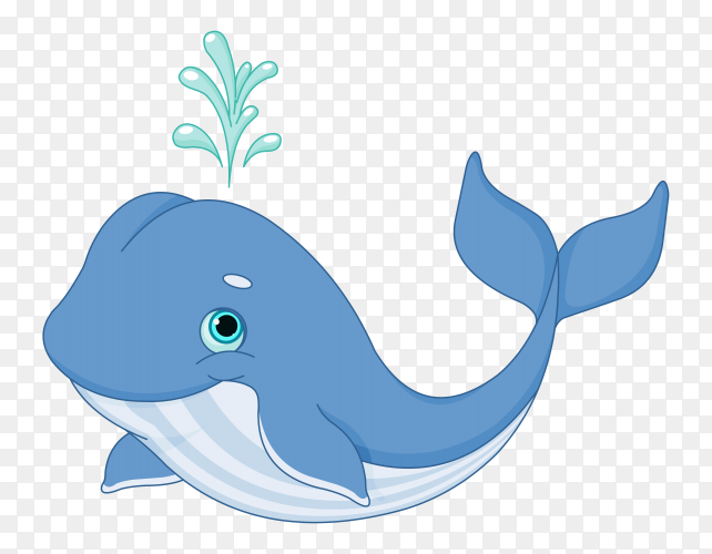 Dolphin cute cartoon on transparent background PNG