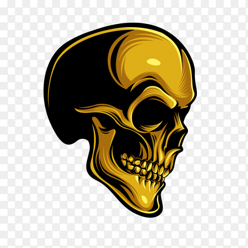 Golden skull design on transparent background PNG