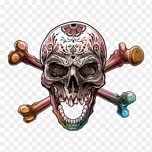 Graphic human skull with pentagram star premium vector PNG