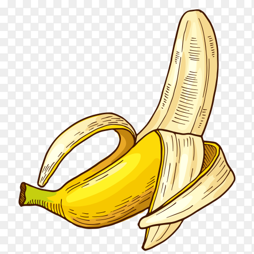 Half peeled Banana isolated on transparent background PNG