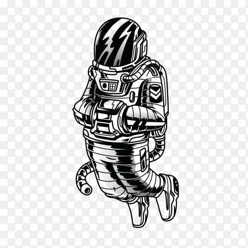 Hypeastro black and white illustration on transparent background PNG