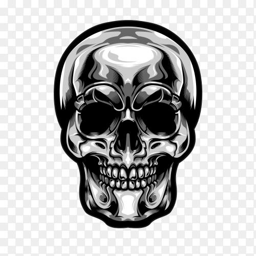 Silver head skull Premium vector PNG