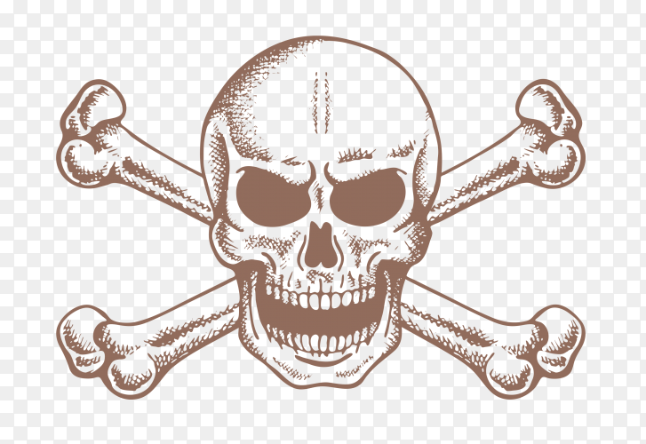 Skull and bones on transparent background PNG