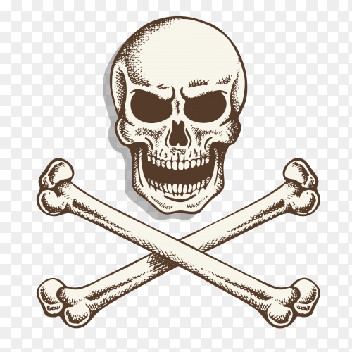 Skull and crossbone on transparent background PNG
