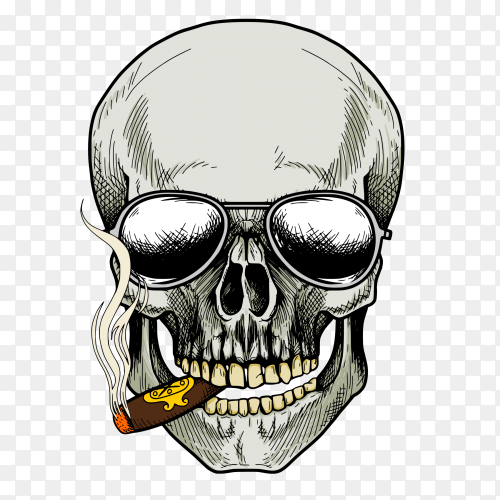 Skull smoking cigarette and wearing sunglasses on transparent background PNG