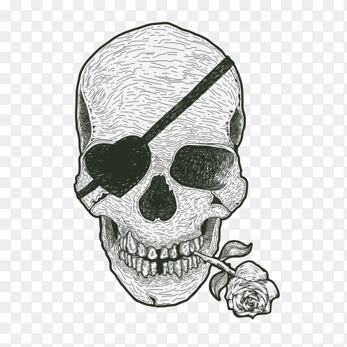 Skull with flower on mouth premium vector PNG