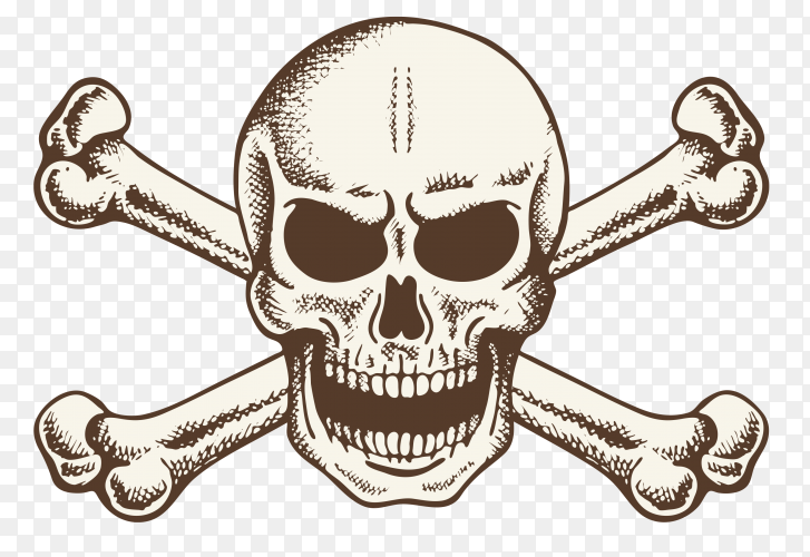 Vintage skull and crossbones vector PNG