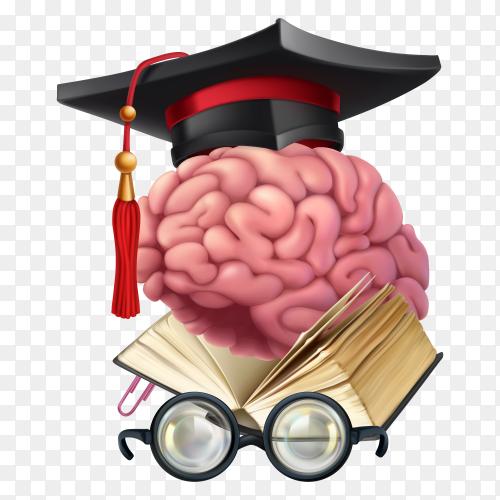 Brain storming Illustration on transparent background PNG
