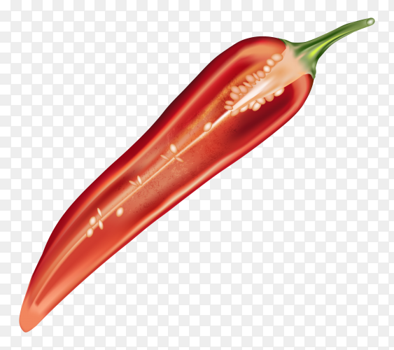 Chili pepper isolated on transparent background PNG