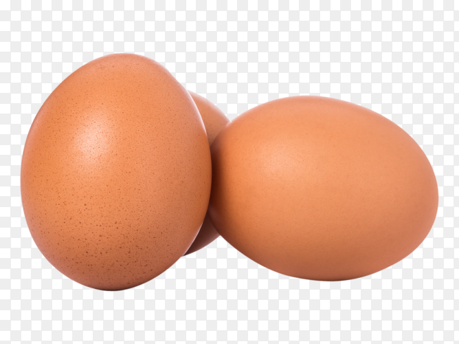 Fresh chicken egg on transparent background PNG