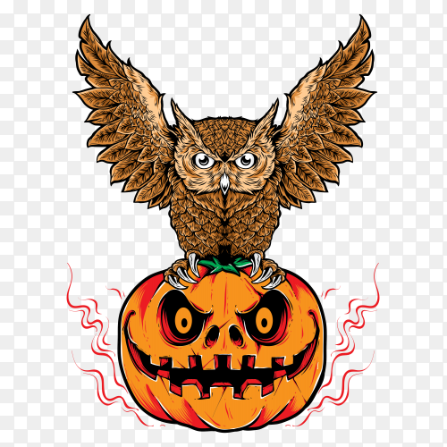 Illustration cartoon halloween owl with a pumpkin on transparent background PNG