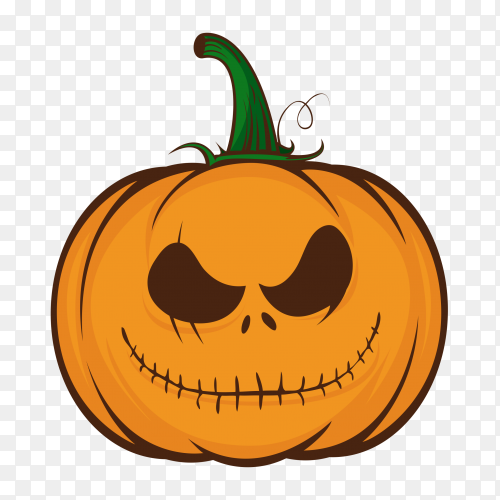 Orange pumpkins for halloween on transparent background PNG