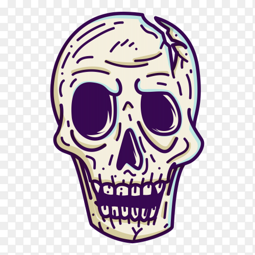 Skull head on transparent background PNG