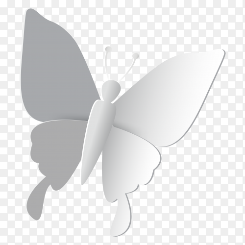 White butterfly Illustration on transparent background PNG