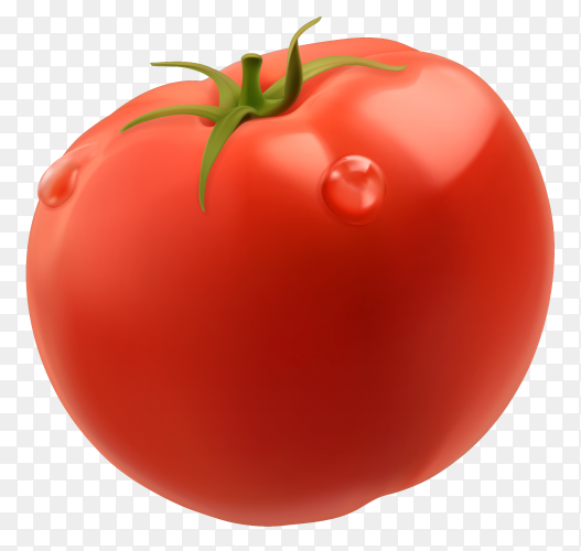 3D fresh red tomato on transparent background PNG