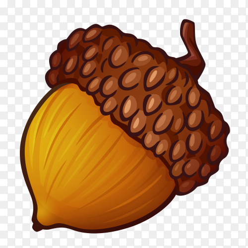 Acorn with brown hat on transparent background PNG