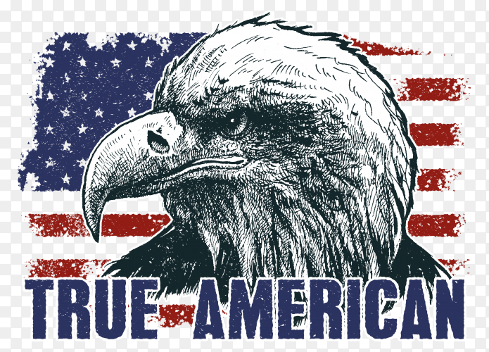 American eagle against usa flag design premium vector PNG