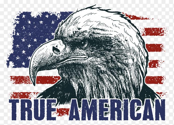 American eagle against usa flag design premium vector PNG