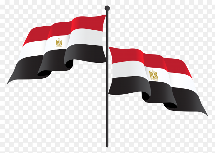 Egypt waving flag on flagpole on transparent background PNG