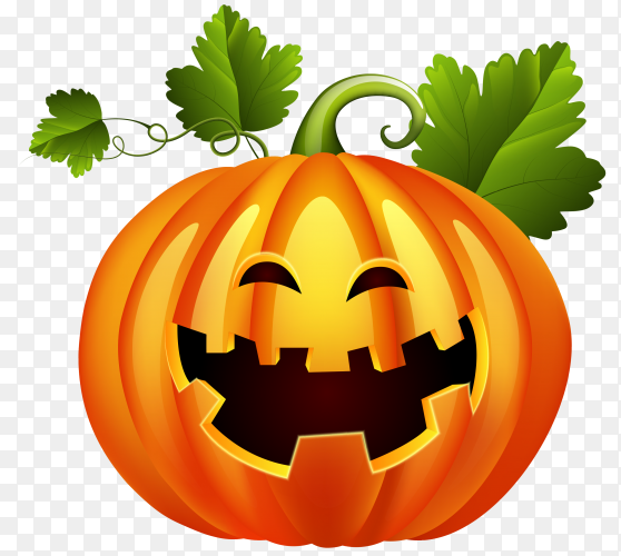 Halloween pumpkin illustration on transparent background PNG