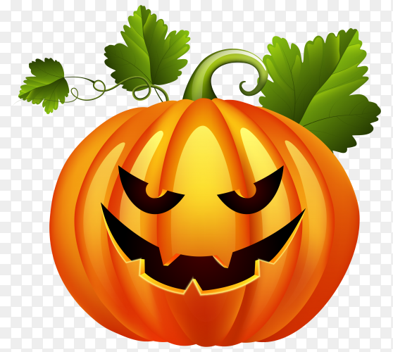 Halloween pumpkin on transparent PNG