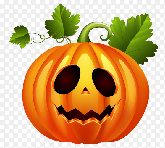 Halloween pumpkin on transparent background PNG