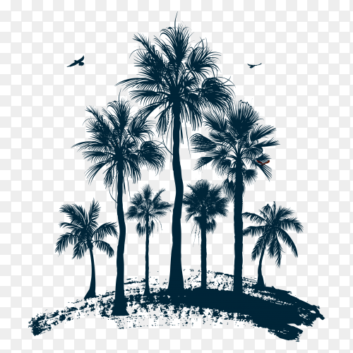 Hand drawn a palm tress illustration on transparent background PNG