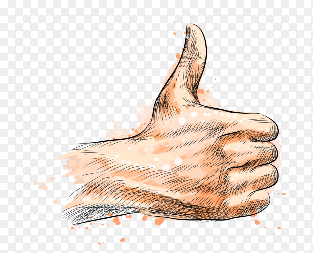Hand showing symbol like Illustration on transparent background PNG